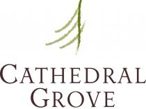 Cathedral Grove townhomes