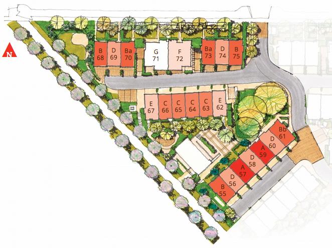 Site plan for Sakura Townhouse South Surrey White Rock Trevor Brucki